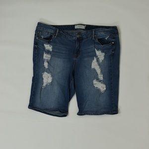 Torrid  Plus  Blue 24  Short Cotton Solid